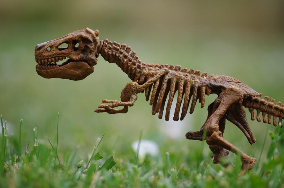 ¿Hasta qué punto eran inteligentes los dinosaurios?